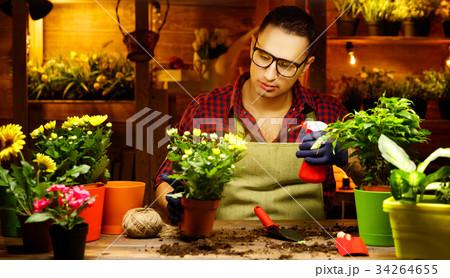 man gardener transplants and watering flowers 34264655
