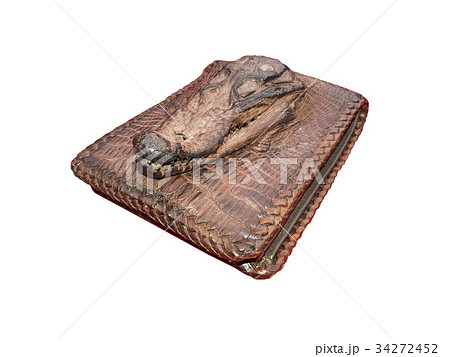 wallet of leather crocodile skinの写真素材 [34272452] - PIXTA