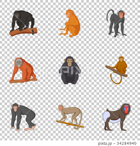 Different kinds of monkeys icons set 34284940