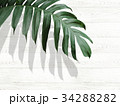 葉 植物 背景のイラスト 34288282