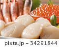 帆立 刺身 貝柱の写真 34291844