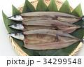 さんまの開き 開き 秋刀魚の写真 34299548