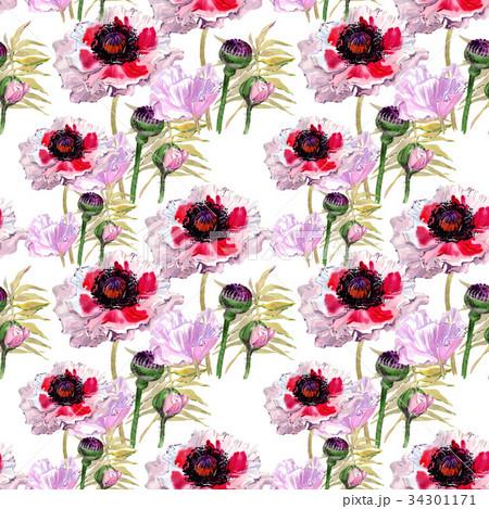 wildflower poppy flower pattern in a watercolorのイラスト素材