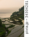 棚田 浜野浦 玄海町の写真 34304281