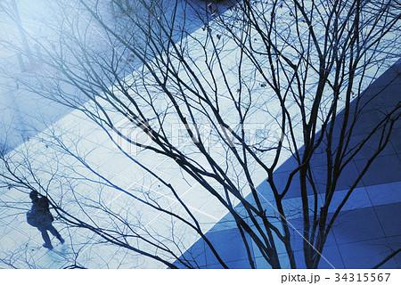 東京、冬の都市風景。 34315567
