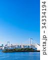 《東京都》お台場・レインボーブリッジを望む風景 34334194