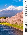 富士山 春 龍巌淵の写真 34335023