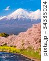 富士山 春 龍巌淵の写真 34335024