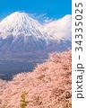 富士山 春 桜の写真 34335025