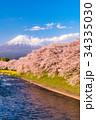 富士山 春 龍巌淵の写真 34335030