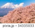 富士山 春 桜の写真 34335033
