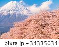 富士山 春 桜の写真 34335034