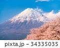 富士山 春 桜の写真 34335035