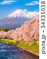 富士山 春 龍巌淵の写真 34335038
