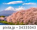 《静岡県》富士山・桜の名所龍巌淵 34335043