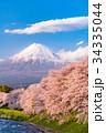 富士山 春 龍巌淵の写真 34335044