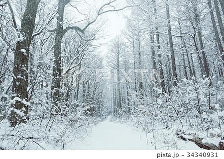 雪の森林、冬の風景。 34340931