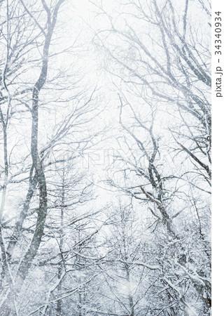 雪の森林、冬の風景。 34340934