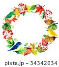 小鳥と植物のリース 34342634