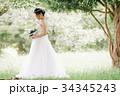 花嫁 新婦 ブライダルの写真 34345243