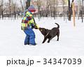 雪 遊ぶ 活動の写真 34347039