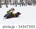 遊ぶ 活動 景色の写真 34347303