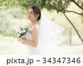 花嫁 新婦 ブライダルの写真 34347346