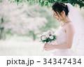 花嫁 新婦 ブライダルの写真 34347434