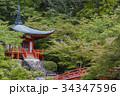 京都 醍醐寺 34347596