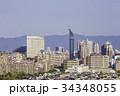 福岡 街並み 福岡タワーの写真 34348055