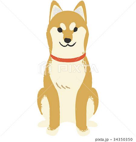 年賀素材・柴犬 34350350