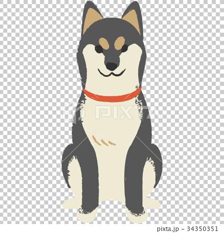 年賀素材・柴犬 34350351