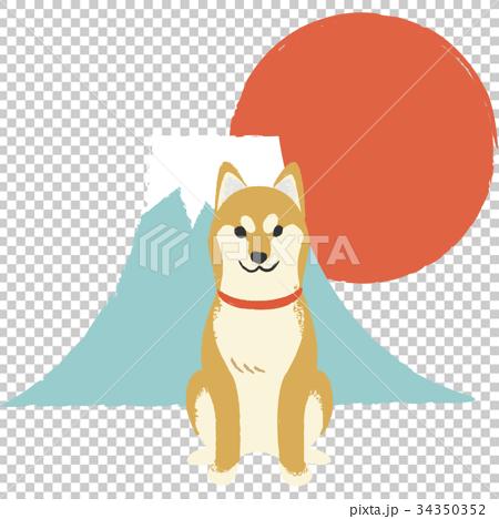 年賀素材・柴犬 34350352