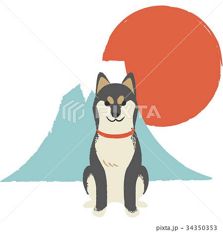 年賀素材・柴犬 34350353