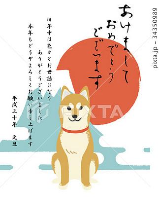 年賀状テンプレート・柴犬 34350989