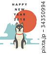 年賀状テンプレート・柴犬 34350994