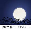 満月 すすき 夜 34354206