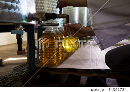 Mid section of female technician examining olive oilの写真素材 [34361724] - PIXTA