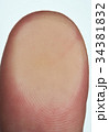 Macro of thumb lines finger 34381832