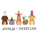 パーティーの帽子をかぶったウサギたち 34385149