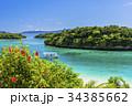 石垣島の川平湾のサンゴ礁の海 34385662