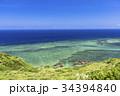 石垣島の平久保崎のサンゴ礁の海 34394840