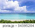 ニシハマ 海 珊瑚礁の写真 34395204