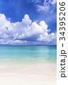 ニシハマ 海 珊瑚礁の写真 34395206