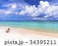 ニシハマ 海 珊瑚礁の写真 34395211