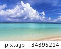 ニシハマ 海 珊瑚礁の写真 34395214