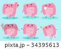 人体 解剖学 キャラクターのイラスト 34395613