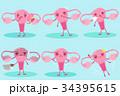 人体 解剖学 キャラクターのイラスト 34395615