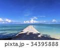 西桟橋 サンゴ礁 海の写真 34395888