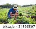 農夫 農家 農民の写真 34396597